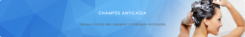 Champús Anticaida